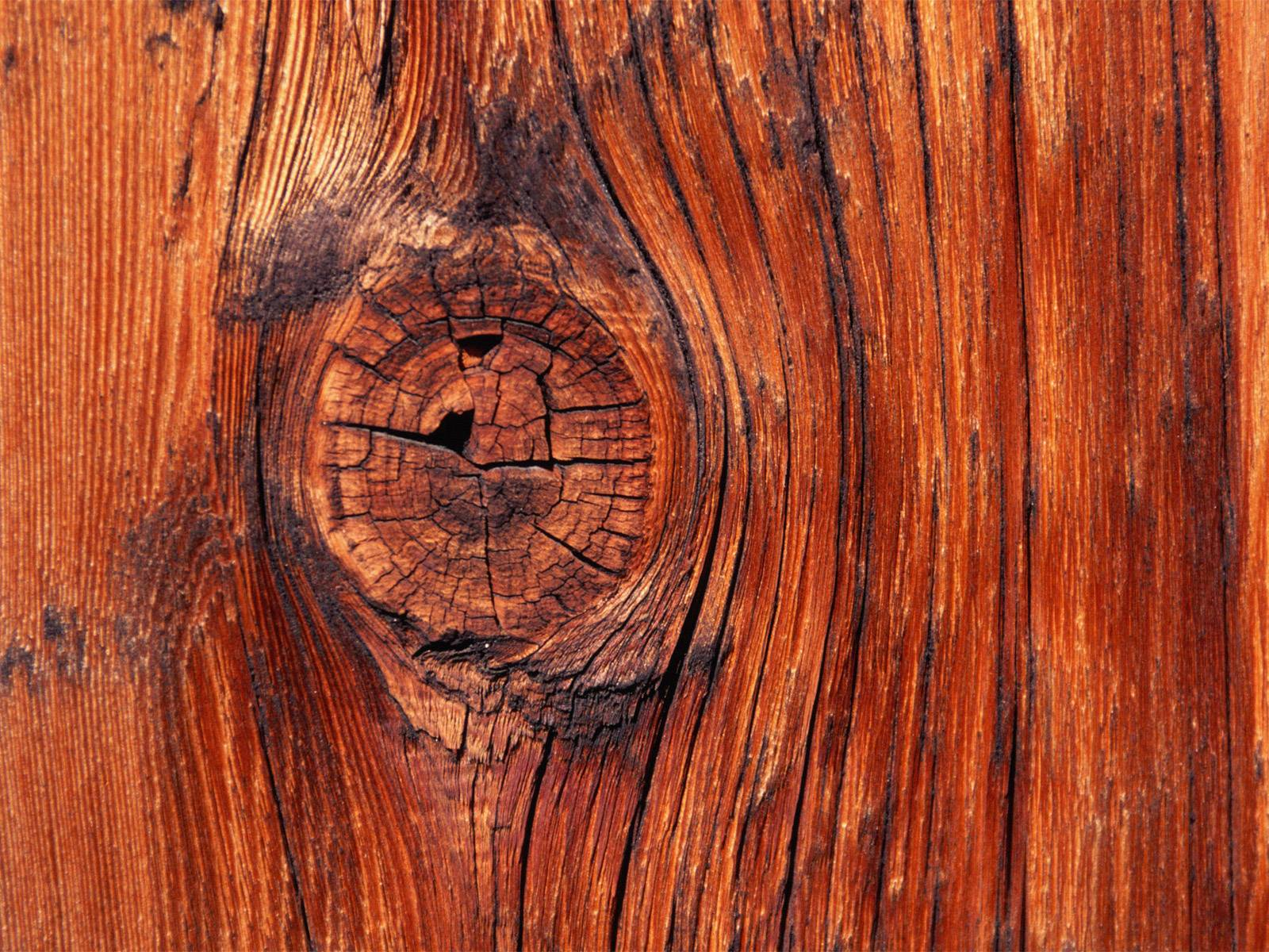 Vista Wallpapers – Textures » Vista Wallpaper Knot in the Wood